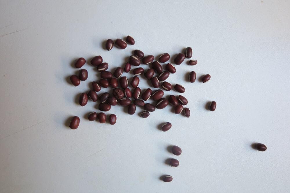 fagioli rossi azuki