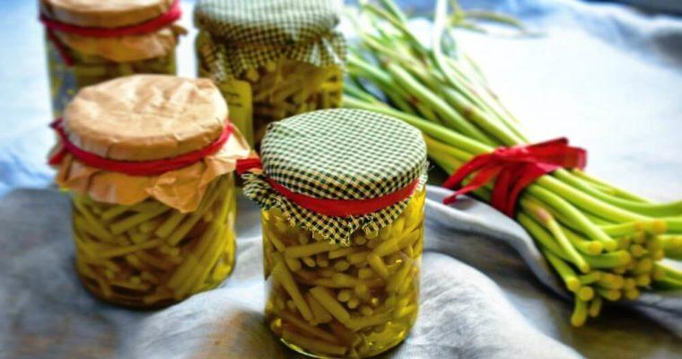 talli d'aglio sottolio